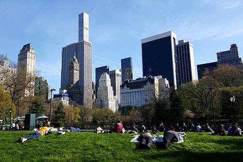 Relaxing in Central Park NYC