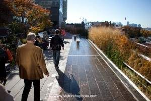 Strolling on the High Line