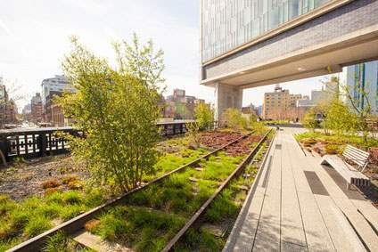 A sunny day on the High Line